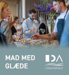 IDA Conference 2019